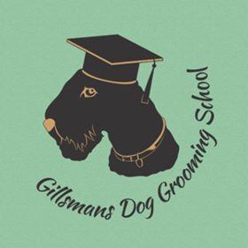 Gilmans Dog Grooming School - Beginners