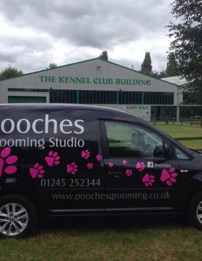 Pooches Grooming Studio